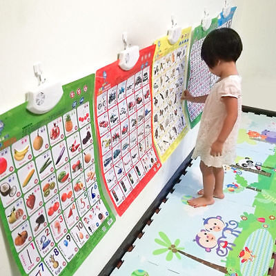 Baby Toddler Educational Wall Hang Poster Phonic Sound Chart Learning Cognize (Learning Posters)