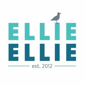Permanent Full Time 'Creative Team Coordinator' For Award Winning Giftware Brand Ellie Ellie HOVE