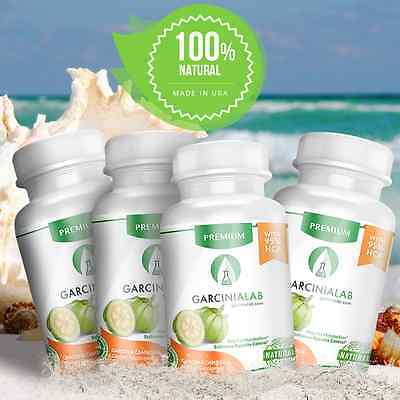 Lot 4 Pack Garcinia Cambogia 100 Pure  Natural Weight Loss 95  Hca Diet  1540Mg