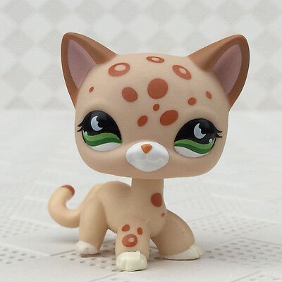 LPS #852 Littlest Pet Shop RARE Short Hair Cat Leopard Moon Eyes Kitty Girl gift