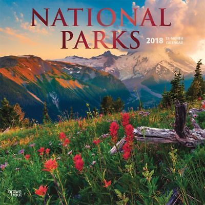 2018 National Parks Wall Calendar,  National Parks by BrownTrout