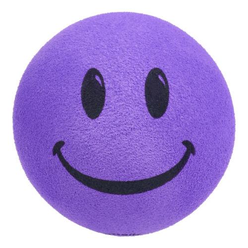 HappyBalls Purple Face Head Car Antenna Ball / Desk Bobble Buddy (Fat Antenna)