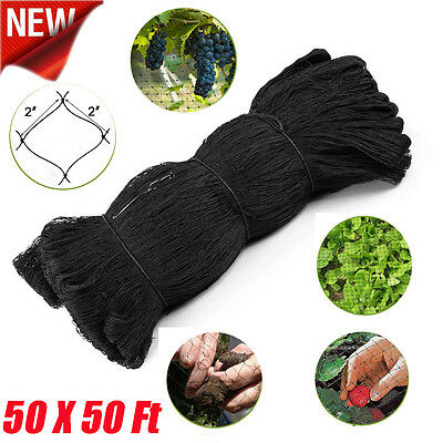 50x50 Bird Netting Chicken Protective Net Screen Poultry Garden Aviary Game Mx