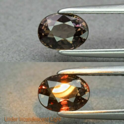 GLC Certified 0.77 Ct Natural Garnet Color Change Oval Unheated Gemstone
