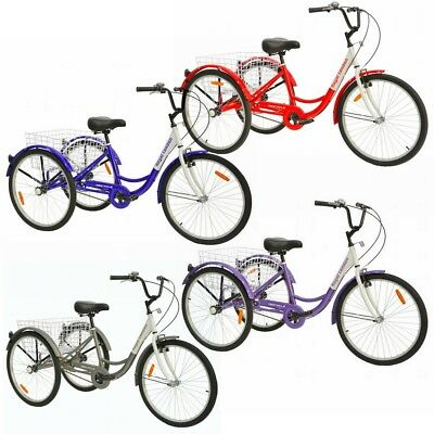 Royal London Adult Tricycle 3 Wheeled Trike Bicycle with Wir
