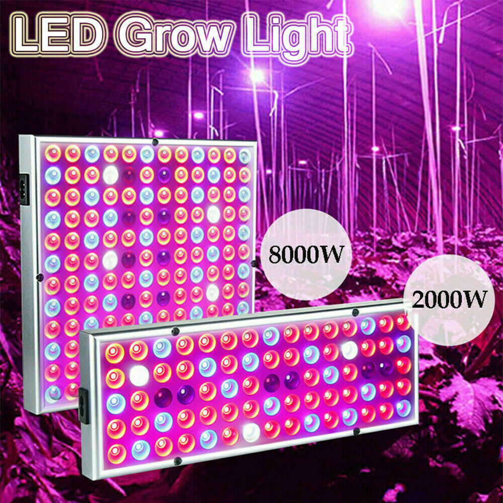 8000W LED Grow Lights Hydroponic Full Spectrum Indoor Plant Flower Growing Bloom