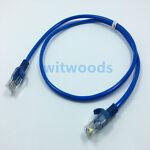 witwoods