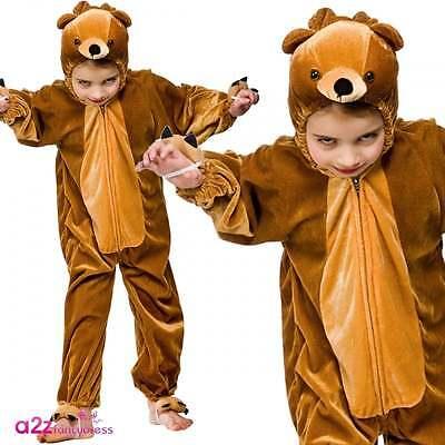 Bär Kinderkostüm Karneval Storybook Goldilocks & Three Bears Größen 3-13 - Story Book Kostüm Kinder