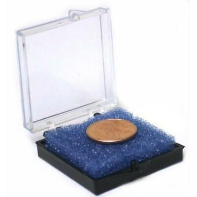 Plastic Clear Lid Container W Foam Jewelry Coins Beads Gems Display Case