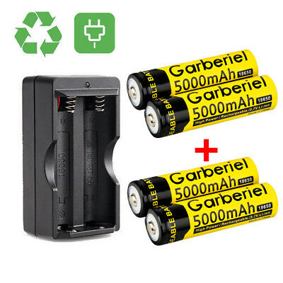 4PCS 5000mAh GARBERIEL Li-ion 3.7V Rechargeable 18650 Battery + Dual Charger USA