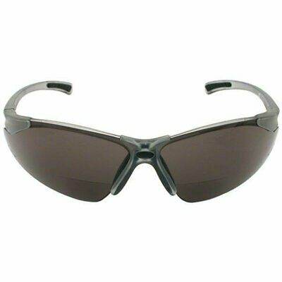 Radians C2-220 Bi-Focal Reading Safety Glasses with Smoke 2.0 Lens (2 (Safety Glasses With Reading Lens)