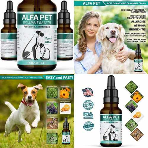 Kennel Cough Medicine For Dogs Organic Dog Colds & Allergies