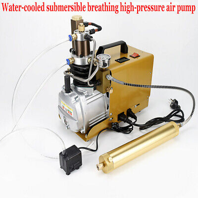 30mpa 4500psi Air Compressor Pcp Electric High Pressure System Diving Bottle
