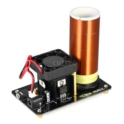 Musik Tesla Coil Plasma Lautsprecher mit Netzteil Wireless Transmission Z0O8