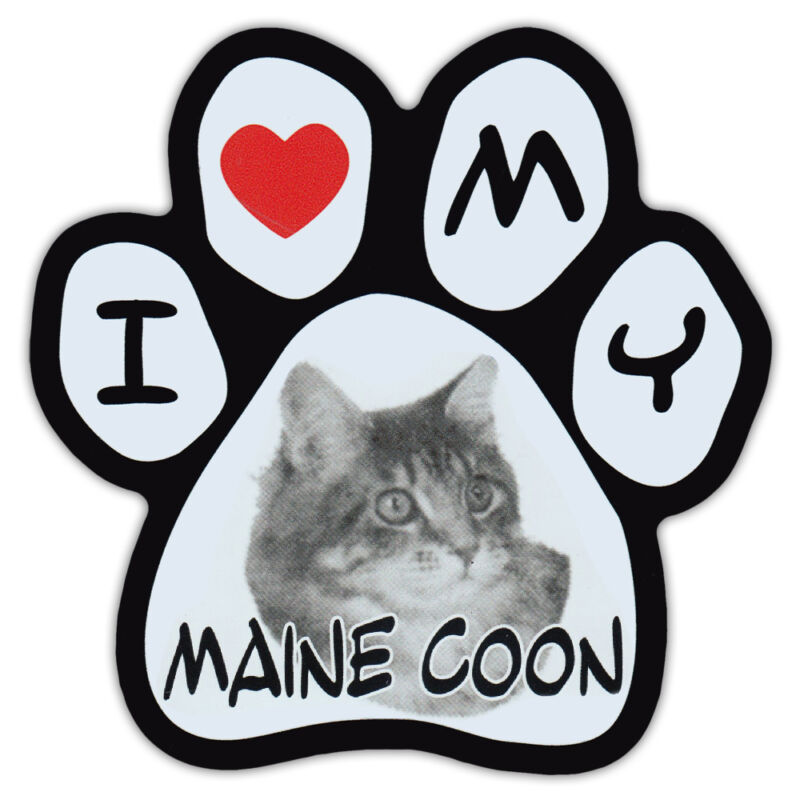 Picture Cat Paw Shaped Car Magnet - Maine Coon - Bumper Sticker Decal
