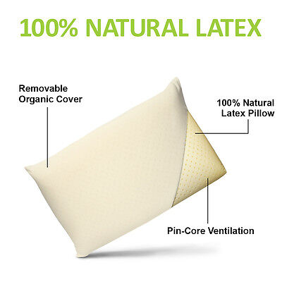 Organic Pillow Cover (All Natural Latex Pillow  with Organic Cotton Cover Standard  SIZES )