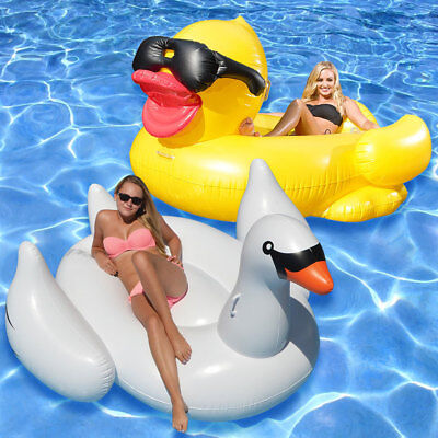 Game Riding Derby Duck & Swimline Swan Swimming Pool Ride On Float Combo Pack