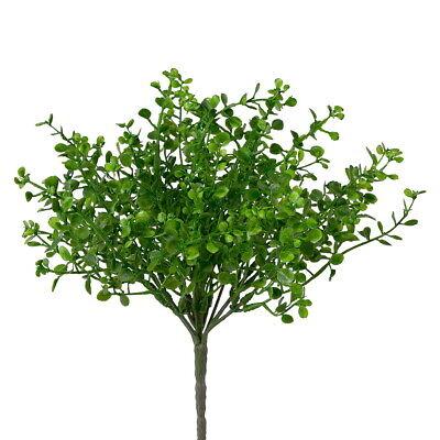 Mühlenbeckia Busch Verde x7 Transmisión, Plástico Planta Exterior L28/11cm segunda mano  Embacar hacia Spain