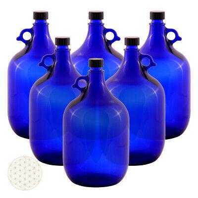 6 Unidad Globo de Cristal Botella 5 Litros Azul Flor de la...