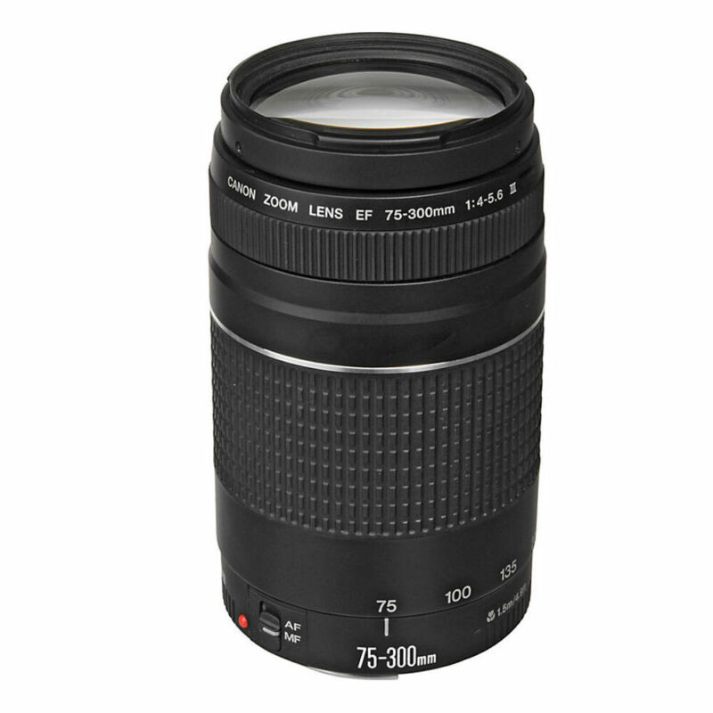 Canon EF 75-300mm f/4-5.6 III Telephoto Zoom Lens for T3i T5 T6 T6i T7 Cameras