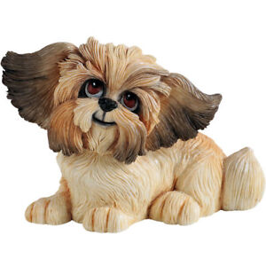 Little Paws Gizmo the Shih Tzu Dog Figurine NEW  in Gift Box