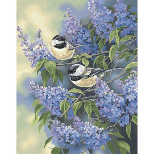 PAINTWORKS Paint by Number Kit CHICKADEES AND LILACS 11 x 14 inches Dimensions