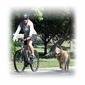 Cycle with your dog - safely - Petego Cycleash