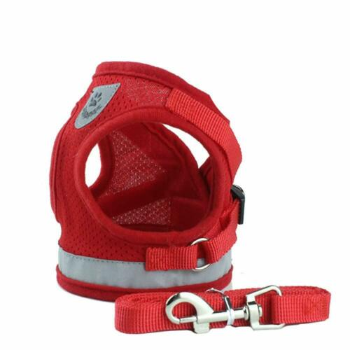 Pet Puppy Leash Control Harness Dog Cat Soft Mesh Walk Collar Safety Strap Vest