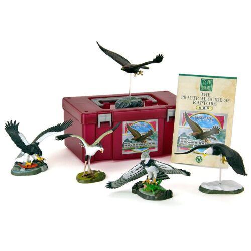 Colorata Endangered Species Raptors Figure Set 5pcs BOX