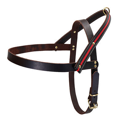 Best Leather Dog Harness with Handle for Large Breeds Training German (Best Dog Harness For German Shepherd)