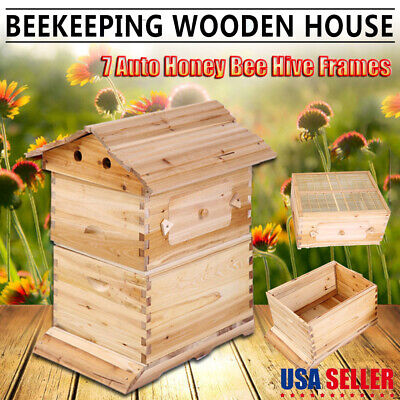 Upgraded Beehive Brood Box For 7pcs Free Flow Honey Hive Frames Beekeeping Us
