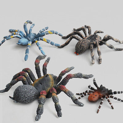 Funny Toy Educational Science Toy Simulated Spider Model Toy For Kids Children (Science Toys For Toddlers)