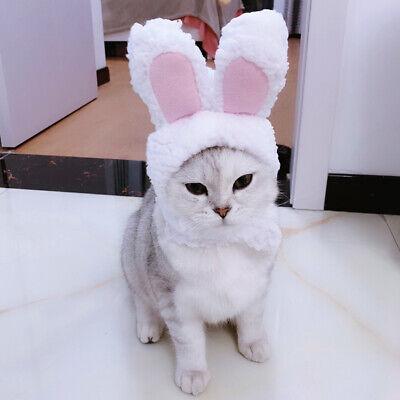 Katze Kostüm Cosplay Kaninchen Kopfbedeckungen Kitten Welpen Hut Kopf Dekoration