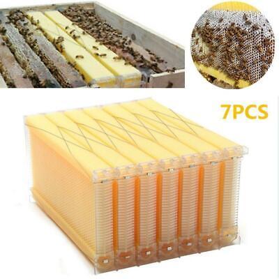 7pcs Auto Honey Bee Hive Frames Beekeeping Tubes Kit Bee Hive Auto Harvest Honey
