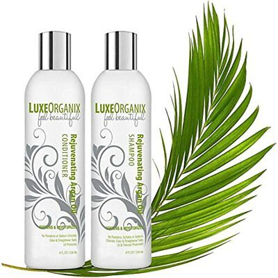 Moroccan Argan Oil Shampoo and Conditioner for Damaged, Dry Curly or Frizzy (Shampoo And Conditioner For Dry And Frizzy Hair)