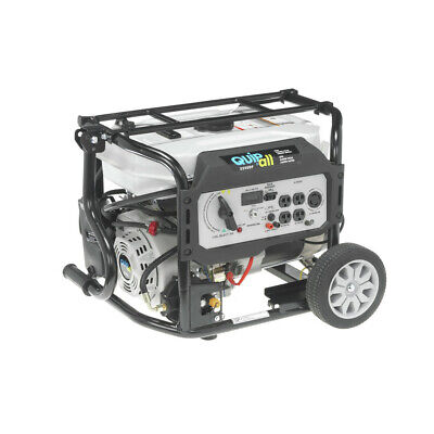 Quipall Dual Fuel Gas Portable Generator 5250DF w/ Electric Start, -
