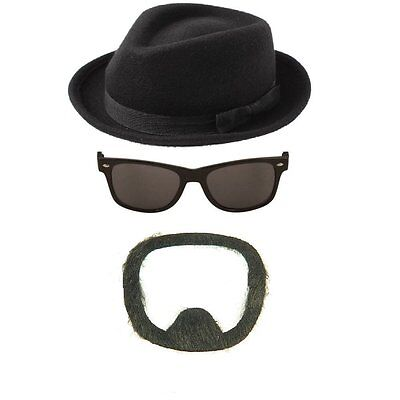 FANCY DRESS HAT SUNGLASSES BEARD HEISENBERG HALLOWEEN FANCY DRESS COSTUME (Heisenberg Hat Halloween Costume)