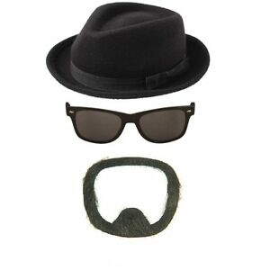 breaking bad fantaisie chapeau lunettes de soleil barbe walter white heisenberg ebay. Black Bedroom Furniture Sets. Home Design Ideas