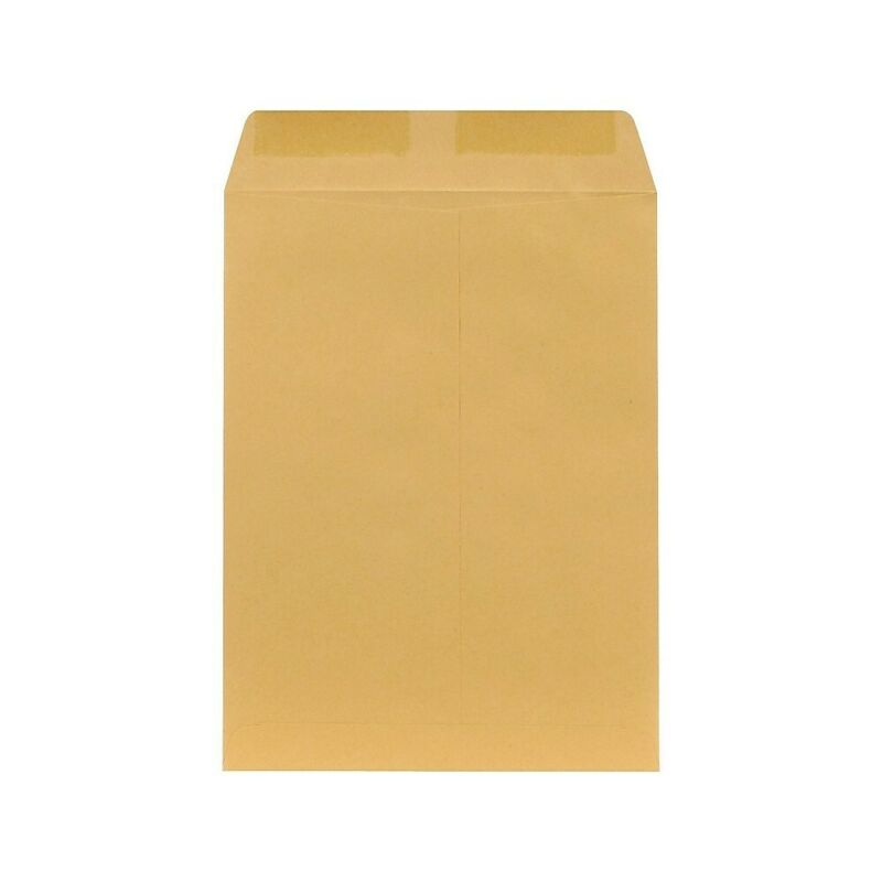 "Staples 9"" x 12"" Economy Brown Kraft Catalog Envelopes 250/Box 381940"