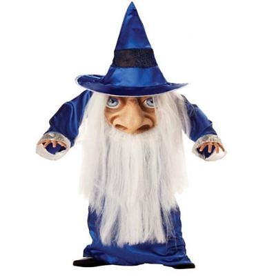 Kinder Wizard Mad Hatter Halloween Kostüm Kinder-Outfit Med - Mad Hatter Kostüm Kinder