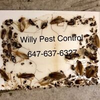 Willy Pest Control 647-637-6327