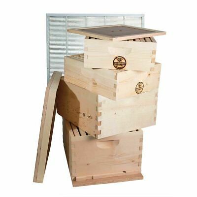 Double Deep Brood Box Double Super Box 4 Tier Beginners Beehive Kit - Gl4stack