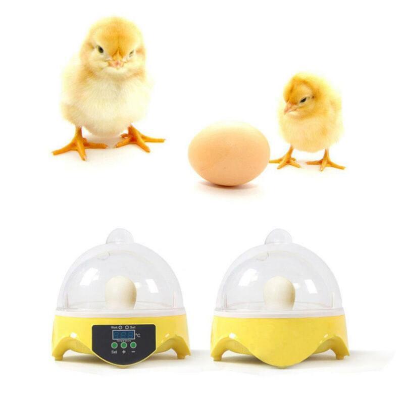 Mini 7 Egg Incubator Hatcher Digital Clear Temperature Control Duck Bird 110V