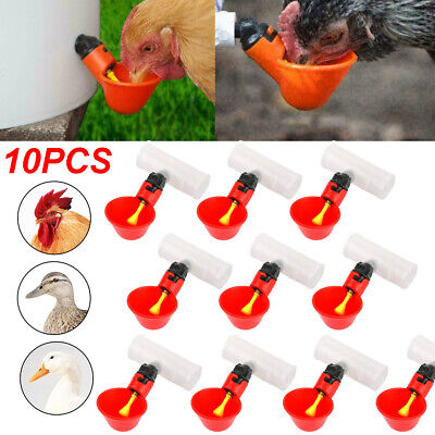 10 Set Fully Automatic Poultry Drinking Machine Chicken Drinking Cup Tee Fitting