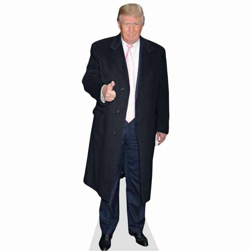 Donald Trump Mini Size Cutout