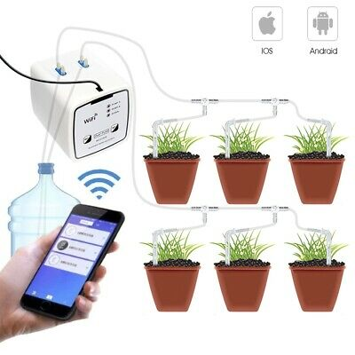 Professional Double Pump Drip Water Devices suit for Greenhouse Garden Machice