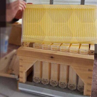 4x Bee Hive Frames Auto Harvest Honey Auto Beekeeping Bpa-free Hotsale
