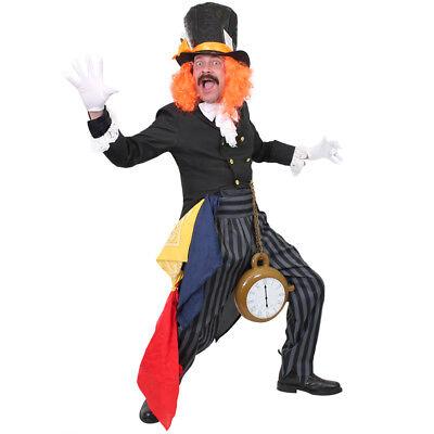 MAD HATTER COSTUME TV FILM FANCY DRESS TEACHER WORLD BOOK DAY COSTUME - Mad Tv Kostüm