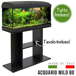 Acquario 80x30x47cm 93 litri completo di filtro pompa for Acquario tartarughe vendita