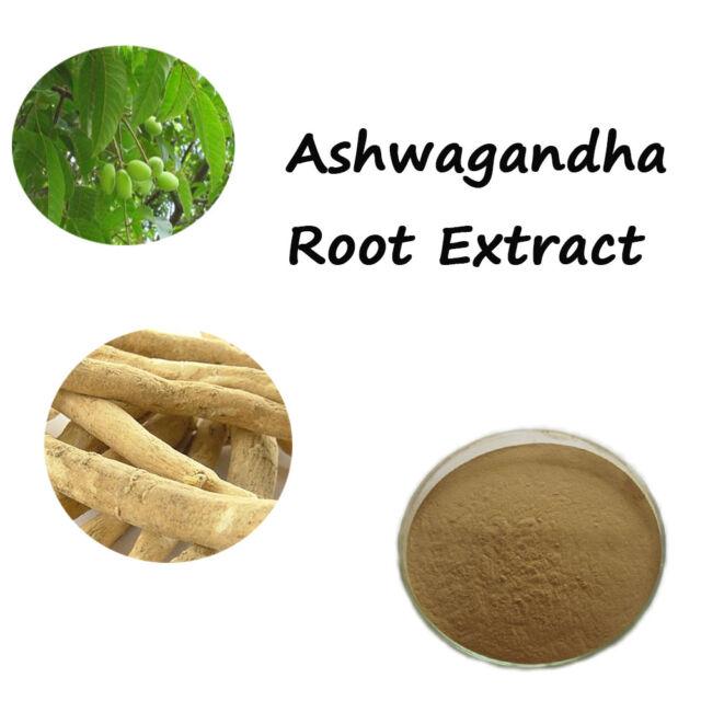 Ashwagandha Root Extract, 5% Withanolides, (Withania somnifera), Anti-stress Z チ